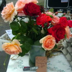 Roses - Hector&#039;s Honey