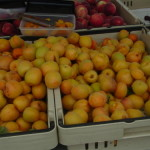 apricots EGB now at the Wednesday market too