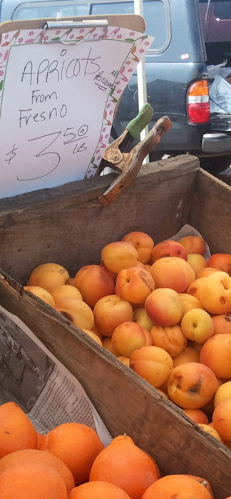 The first apricots of the season  The Fruit Factory  Wednesday and Saturday