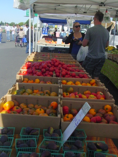 The Patch  Heirloom tomatoes  Wed Thurs and Sat markets