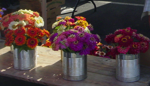 Zinnias Ridgeview Farm only at the Wednesday market