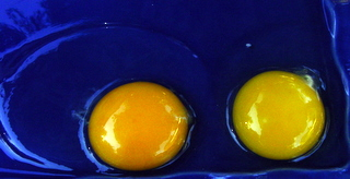 Which egg would you rather have?